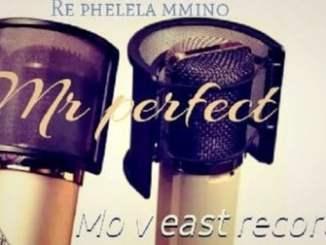 Mr Perfect, DJ M2C, Ungowam, Kay lap, Dj La Bengwa, mp3, download, datafilehost, fakaza, DJ Mix