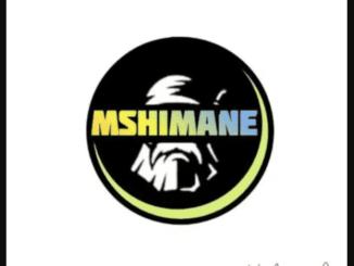 Mshimane, Ara, Enkonzweni, mp3, download, datafilehost, fakaza, DJ Mix
