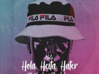 Nelz, Hola Heita Hate, Moozlie, Phreshclique, mp3, download, datafilehost, fakaza, DJ Mix