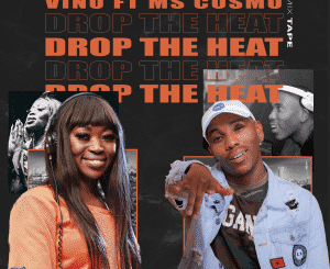 DJ Vino, Drop The Heat, Ms Cosmo, mp3, download, datafilehost, toxicwap, fakaza