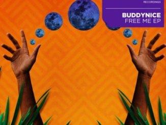 Buddynice, Free Me, download ,zip, zippyshare, fakaza, EP, datafilehost, album