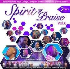Spirit of Praise, Vol. 6