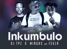 Download mp3: DJ Tpz & Mingas Inkumbulo ft. Fekza fakaza 2018 2019 com music gqom amapiano afrohouse mp3 download