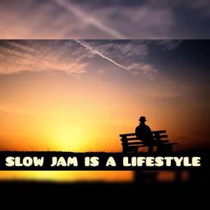DJ Ace – Slow Jam Is A LifeStyle (AmaPiano Mix)-fakazahiphop