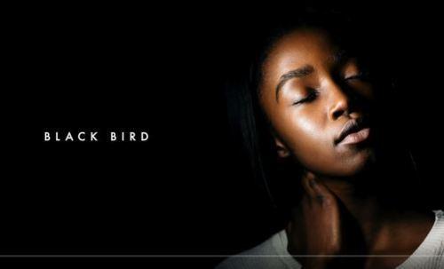 Dennis Cruz & Ian Ludvig – Black Bird (Original Mix)-fakazahiphop