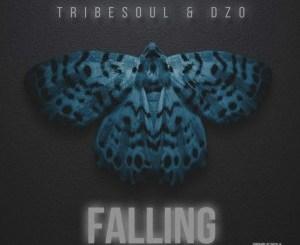 Tribesoul & Dzo – Falling (Original Mix)