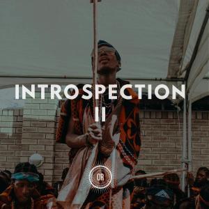 VA – Introspection Part II-fakazahiphop