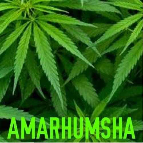 AMARHUMSHA – Khwela Sewubhatele