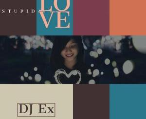 DJ Ex – Stupid Love (Original Mix)