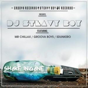 DJ Steavy Boy – Shake Ingane (feat. Mr. Chillax, Groova Boys & Sdunkero)
