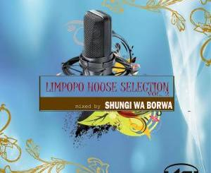 Shungi Wa Borwa & DJ Native SA – Limpopo House Selection, Vol. 2