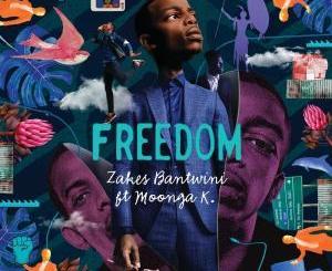 Zakes Bantwini, Moonga K – Freedom (Benediction SA Remix)