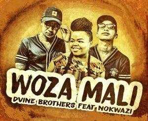 Dvine Brothers Ft. Nokwazi – Woza Mali