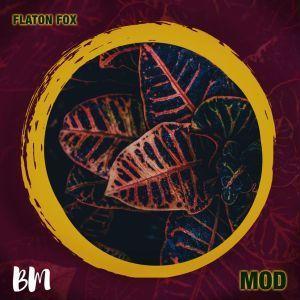 DJ Flaton Fox – MOD