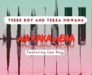 Tsebe Boy & Tebza Ngwana – Wa Yaka Wena