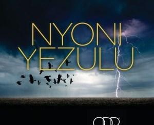 Zakes Bantwini & Leroy Styles – Nyoni Yezulu (Radio Edit)