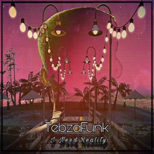 TebzaFunk – I Need Reality