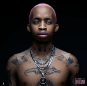 Tshego – No Ties Remix (Snippet) Ft. King Monada & AKA
