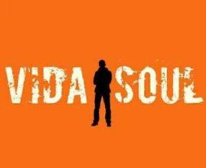 Vida-soul – The Barbarian