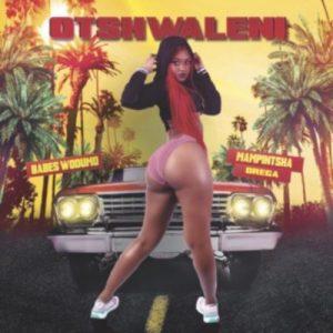 Babes Wodumo – Otshwaleni Ft. Mampintsha & Drega