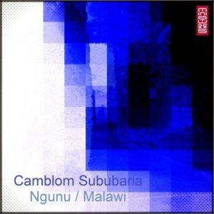 Camblom Subaria – Ngunu / Malawi