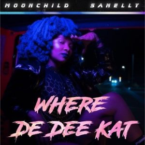Moonchild Sanelly – Where De Dee Kat