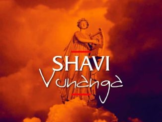 Shavi – Bikiri Ft. Dlala Lazz