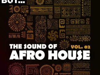 Savio De Simone feat. Tony Sou – As We Move Together As One (Afrobeat Mix) Mp3 Download