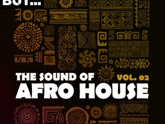 Alan de Laniere – Heat Up (Afro Carrib Mix) Mp3 Download