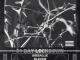 808 Sallie – 21Days Ft. Blxckie, Lucasraps & Shouldbeyuang
