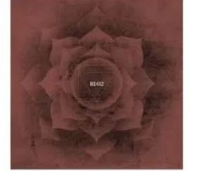 ALBUM: VA – Root Influence 2
