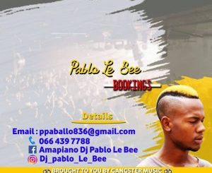 Pablo Le Bee – Nko NKo Nko Thebelebe (Christian BassMachine)