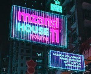 ALBUM: Various Artists – House Afrika Presents Mzansi House Vol.11