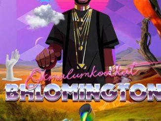 Okmalumkoolkat – Bhlomington (Tracklist + Cover Artwork)
