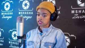 Boohle – Mshasha Zwinepe (Lockdown Mix)