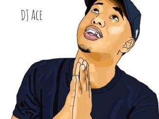 DJ Ace – Peace of Mind Vol 14 (Back to Back Mix)