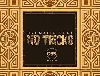Drumatic Soul – Impimpi Ft. Tee R (Original Mix)