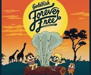 Goldfish – Forever free Ft. Nate Highfield & Dan Silver