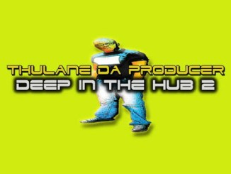Thulane Da Producer – Deep In The Hub 2