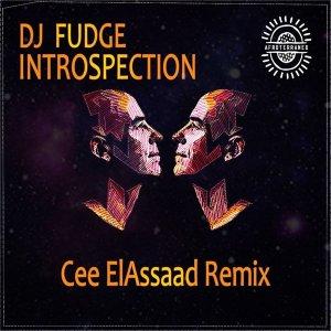 DJ Fudge – Introspection (Cee ElAssaad Introspective Remix)