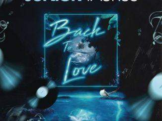 Junior Taurus – Back to Love