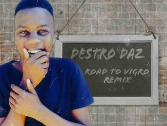 Destro Daz – Road To Vigro (Remix)