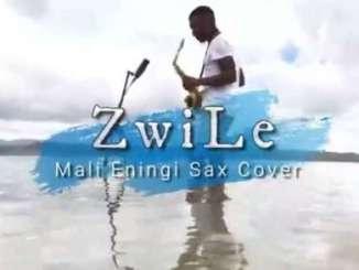 Big Zulu – Mali Eningi Ft. Riky Rick & Intaba Yase Dubai (Zwile Sax Cover)