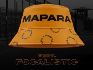 Mellow & Sleazy – Mapara Ft. Focalistic
