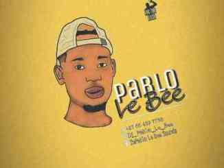 Pablo Le Bee – 501 Personality (Christian BassMachine)