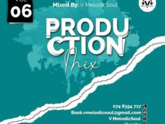 V Melodicsoul – 100% Production Vol. 6
