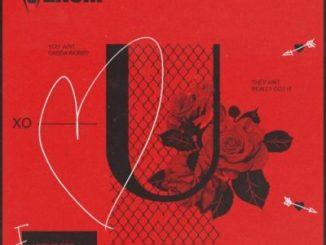 DJ Venom – U Ft. Le Paris, Daecolm & Tyler ICU