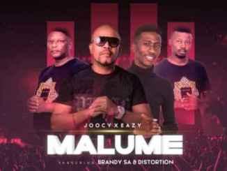 BrandySA & Distortion – Malume Ft. Joocy & Eazy