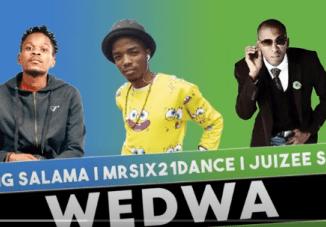 King Salama x Mr Six21 DJ Dance & Juizee SA – Wedwa (Original)