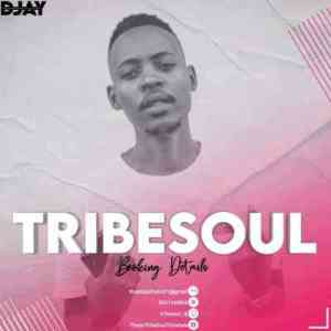 TribeSoul – For Ben & Kelvin Momo (Tribute Mix)